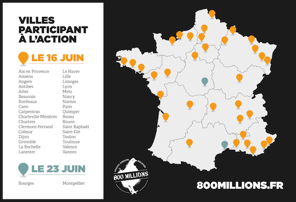 Des actions pour les poulets dans toute la France