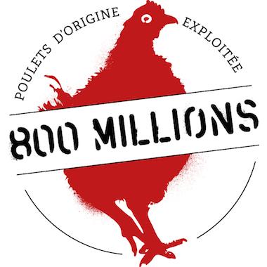 800 millions, Poulets d'origine exploitée