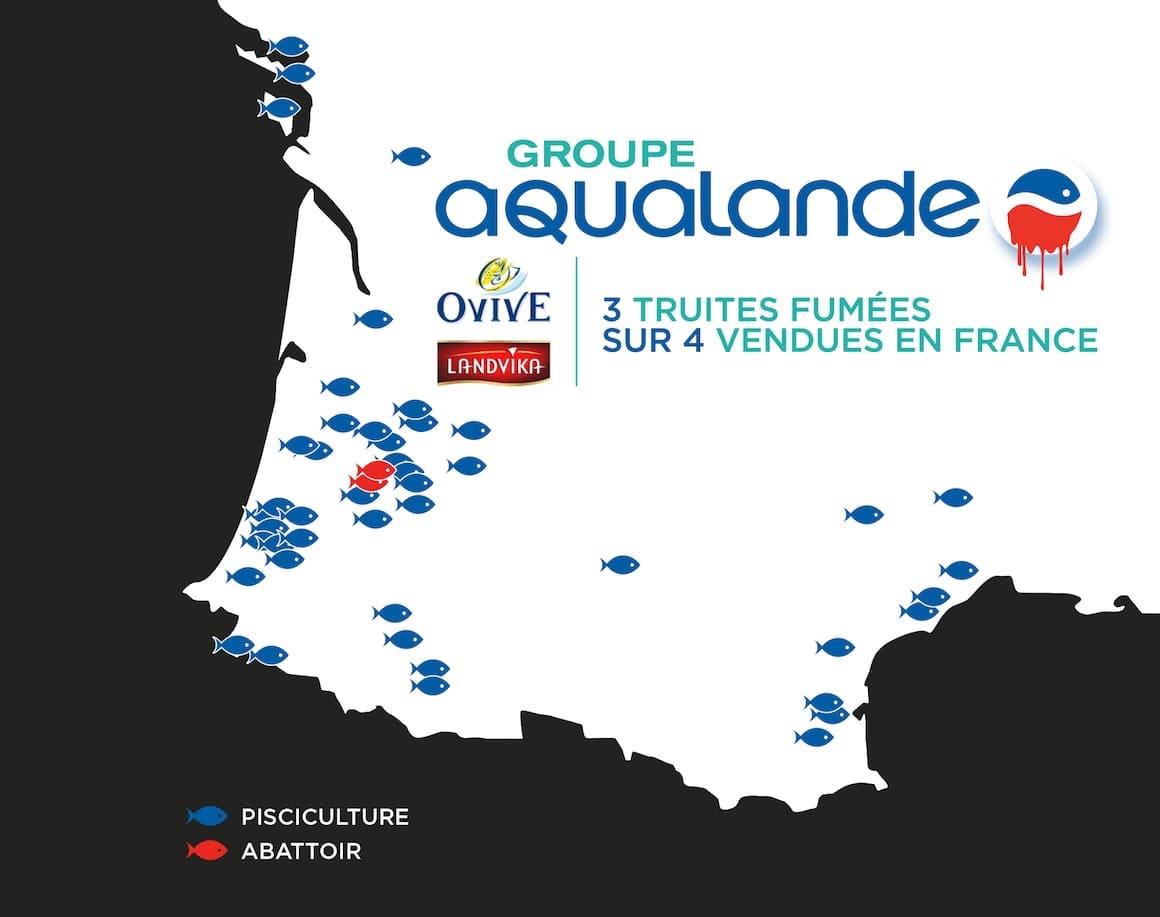Les piscicultures et abattoirs du groupe Aqualande