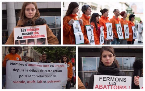 Action L214 à Toulouse