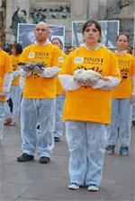 Semaine Mondiale d'actions pour l'Abolition de la Viande