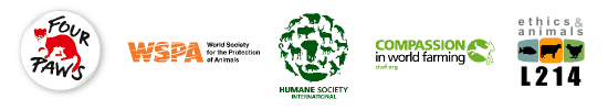 Logos des 5 associations de protection animale