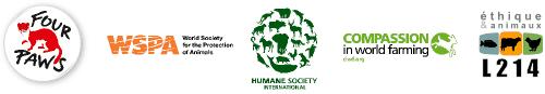 Logos des 5 associations