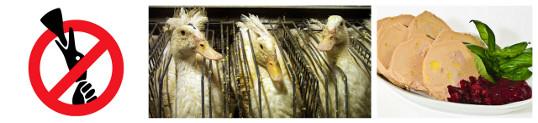 Israël interdit le foie gras
