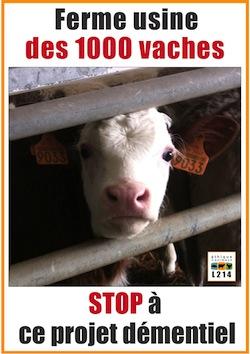 Manifestation contre l'élevage industriel