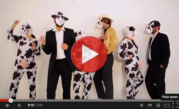 Vidéo des vaches en colère