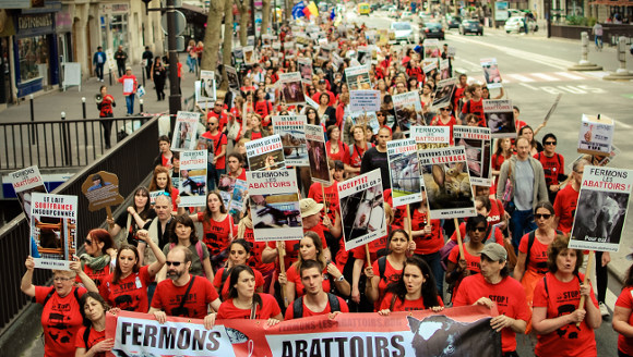 photo de la Marche en 2013