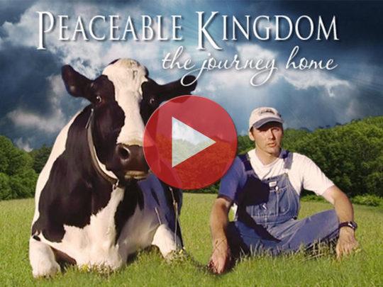 trailer de Peaceable Kingdom