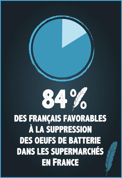 84% des Français approuveraient que les supermarchés cessent de vendre des oeufs de poules élevées en cage