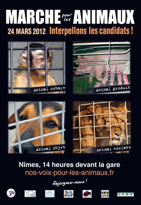 Marche pour les animaux