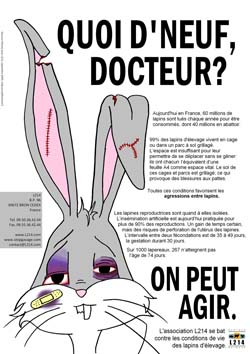 Affiche lapin 17