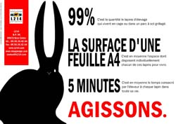 Affiche lapin 18
