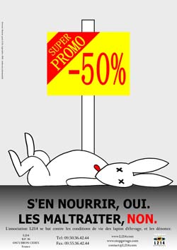 Affiche lapin 19