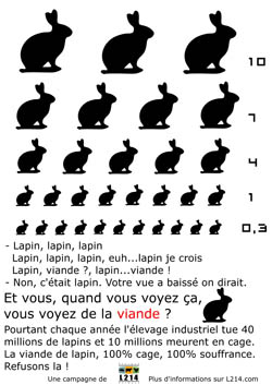 Affiche lapin 2