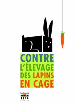Affiche lapin 20