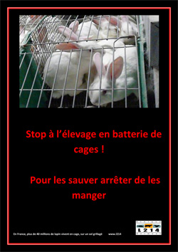 Affiche lapin 27