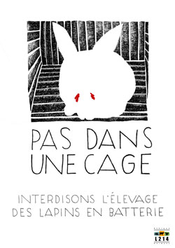 Affiche lapin 5