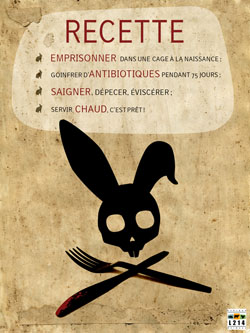 Affiche lapin 7