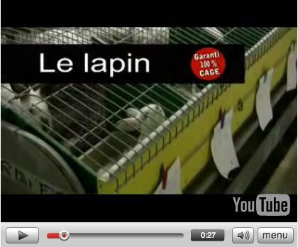 Clip lapin : garanti 100 % cage