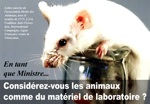 Carte postale anti-vivisection