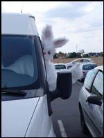 Tournée pour les lapins 2008
