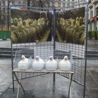 Visitez le blog du tour contre le foie gras 2007!