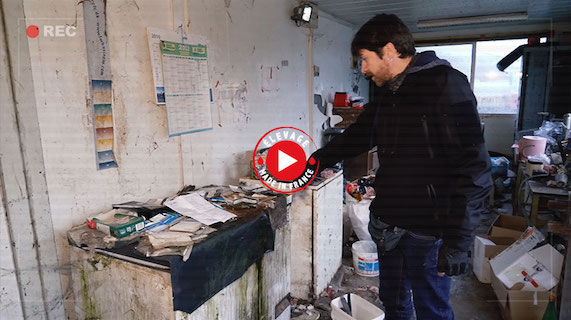 élevage de visons de vendée