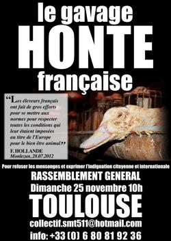 Manifestation contre le foie gras à Toulouse