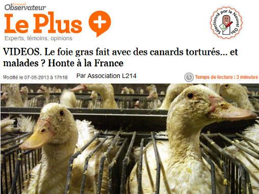 article sur le foie gras dans le Nouvel Obs