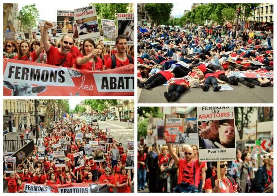 Manifestation pour la fermeture des abattoirs