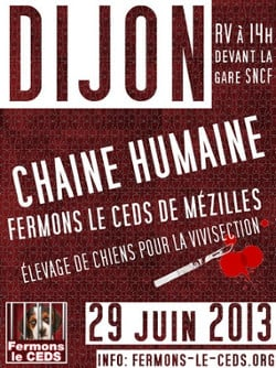 Chaîne humaine à Dijon