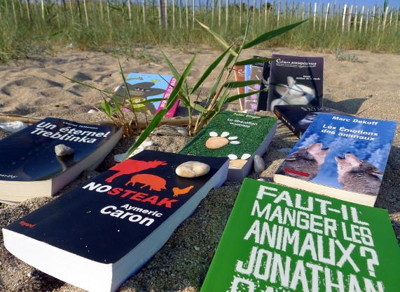 Photo de livres vendus en boutique L214