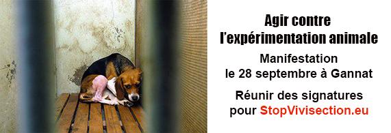 Action contre l'élevage Harlan de Gannat et StopVivisection.eu