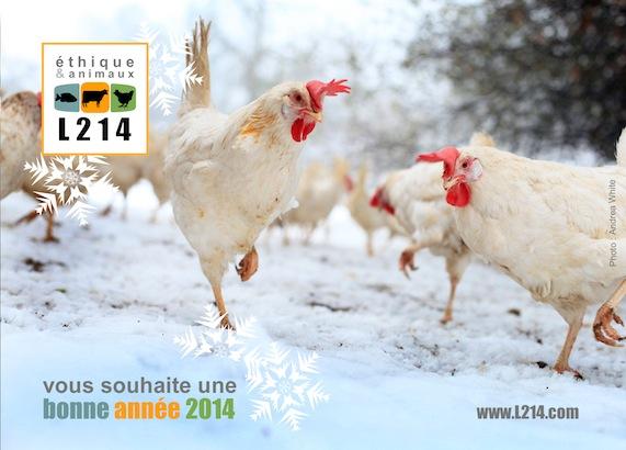 Meilleurs voeux pour 2014