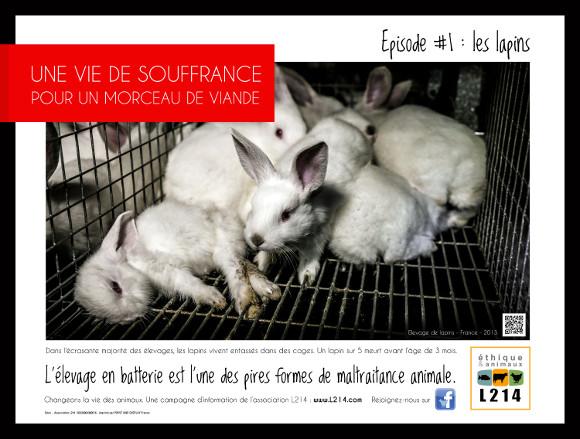 Affiche lapins dans le métro parisien