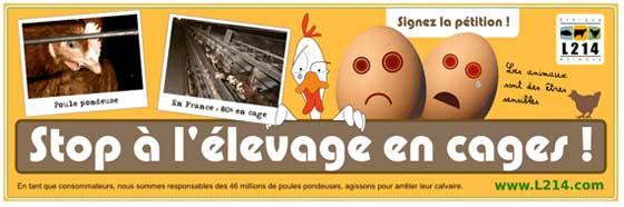 banderole contre l élevage en cage des poules pondeuses