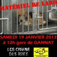 Manif contre Un élevage de la honte  : HARLAN a Gannat ( 03800 ) Vignette-Gannat