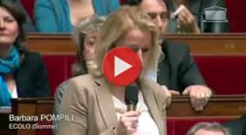EELV à l'Assemblée contre l'élevage des 1000 vaches