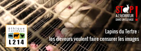 Stop à l'horreur dans un élevage