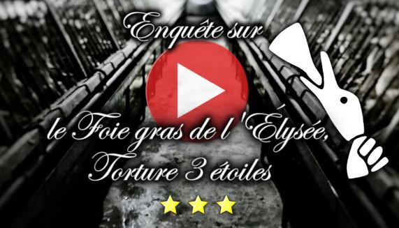 vidéo foie gras périgord