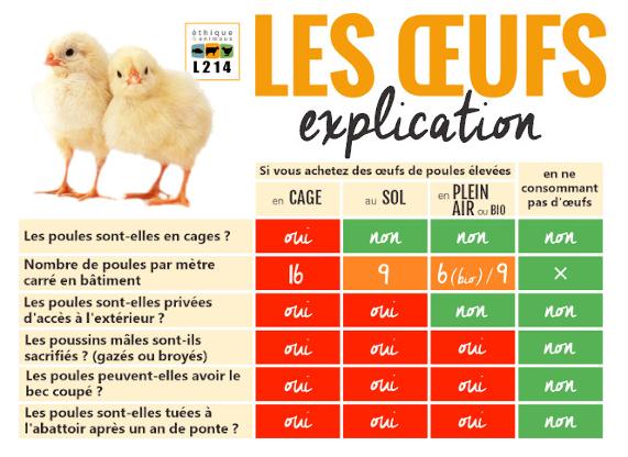 tableau oeufs codes modes élevages