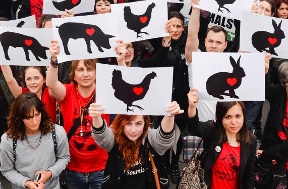 Marche pour la fermeture des abattoirs
