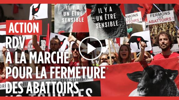 La Marche pour la fermeture des abattoirs en vidéo