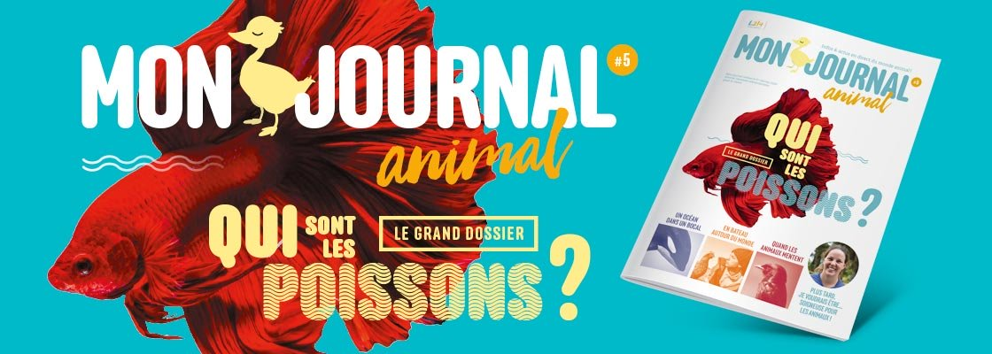 Mon journal animal n° 5